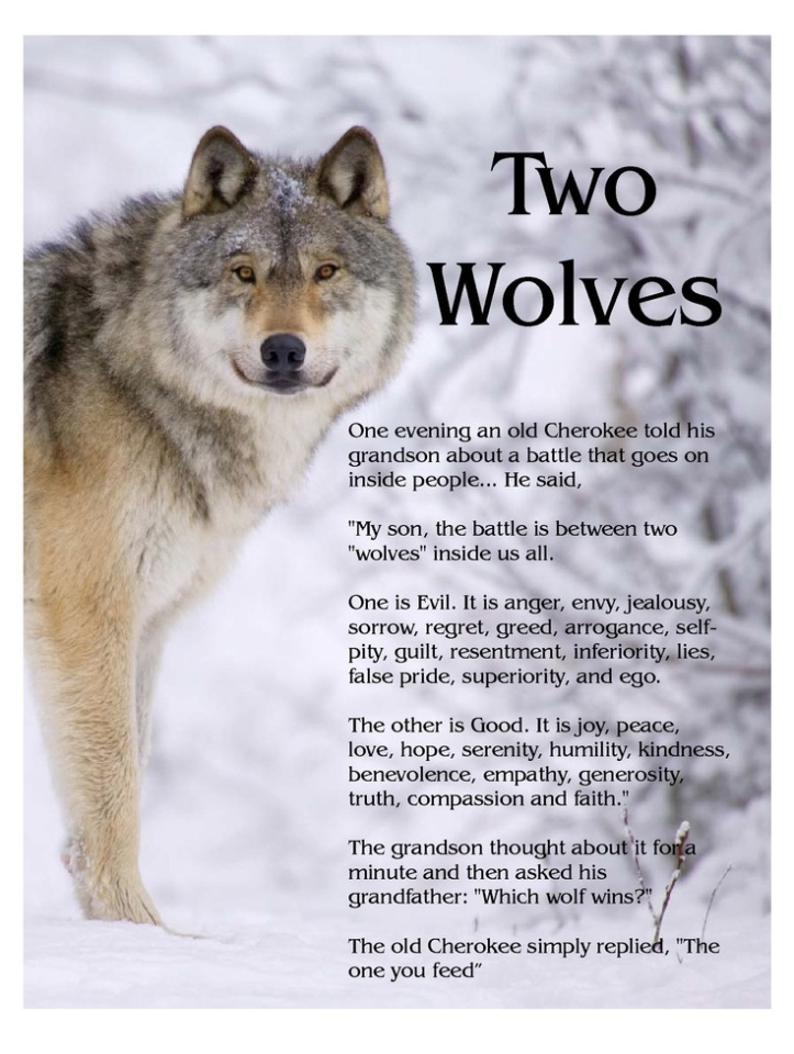 The Story of Two Wolves