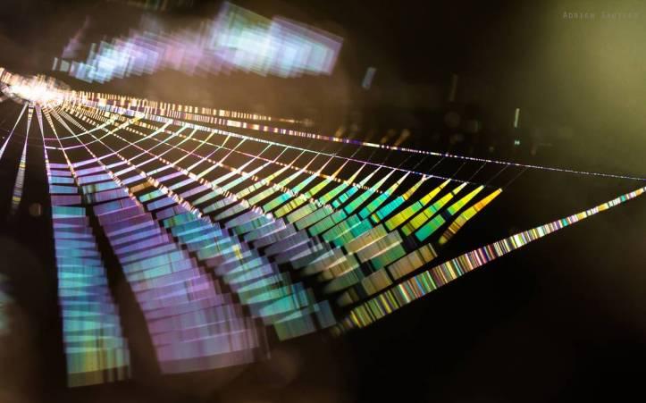 rainbow_cobweb_by_admalamcrucem_d7al4ld-pre