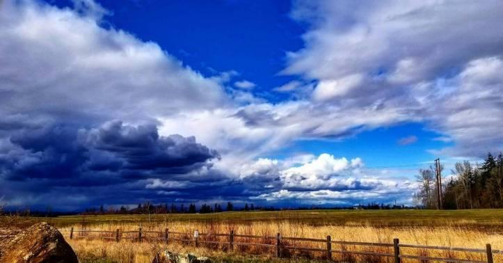 stormy_plains____by_goldenfox444_de1ctah-pre