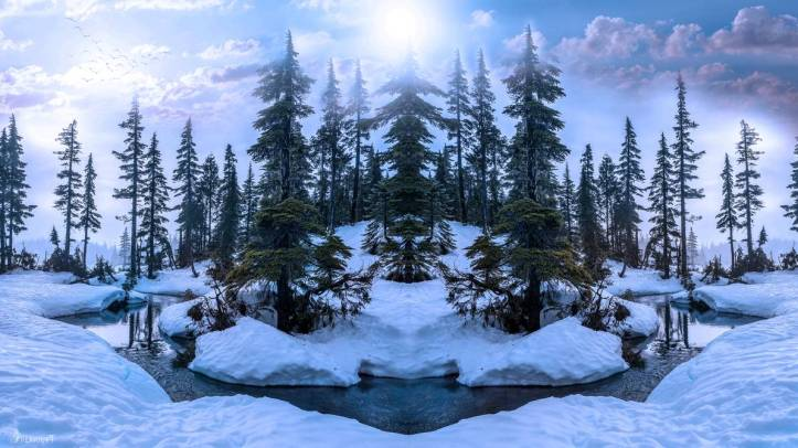 winter_forest_by_annemaria48_de86xwh-pre